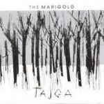 the marigold tajga